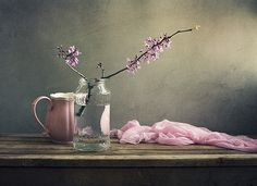 Anna Nemoy photograph: a softer more subtle version of the pink, rose, charcoal and cream palette. Loved this.