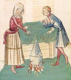 Konrad von Megenberg Das Buch der Natur — Hagenau - Werkstatt Diebold Lauber, um 1442-1448? Cod. Pal. germ. 300 Folio 314r