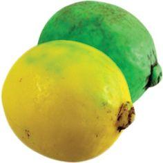 Lemon & Lime Soap - Fruit Soaps - Soap - Shower - Body Kantina