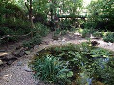 #Stadtgarten #Connewitz #Leipzig | Urban Gardening Projekt
