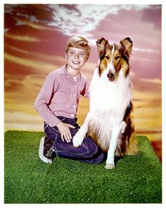 http://media.gettyimages.com/photos/jon-provost-and-lassie-in-publicity-portrait-for-the-television-picture-id161060354?k=6&m=161060354&s=594x594&w=0&h=Msl-aOG6JDTLZEXmuT6RHCwC5X5rLwrg6HWFu7ob99c=
