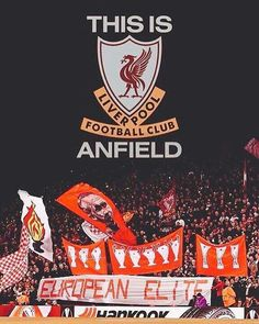 Ynwa Liverpool, Salah Liverpool, Liverpool History, Liverpool Football Club, Liverpool Fc Wallpaper, Liverpool Wallpapers, Best Football Team, Football Art, This Is Anfield