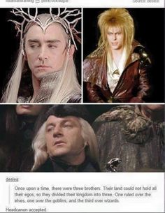 Thranduil from LOTR, Jareth from Labyrinth and Lucius Malfoy from Harry Potter. Tumblr Funny, Funny Memes, Hilarious, Nerd Memes, Lotr, Hunger Games, O Hobbit, Hobbit Funny, J. R. R. Tolkien