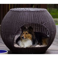 The Refined Canine Indoor/Outdoor Igloo Pet Bed - PetSmart -now this is a dog bed for Fenway for around the fire! Cute Dog Beds, Pet Beds, Dog Igloo, Outdoor Dog Bed, Indoor Outdoor, Outdoor Living, Outdoor Ideas, Backyard Ideas, Designer Dog Beds