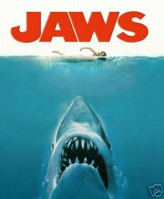Google Image Result for http://www.logoi.com/pastimages/img/shark_3.jpg  In America they call him Jaws In Australia we call him Bruce