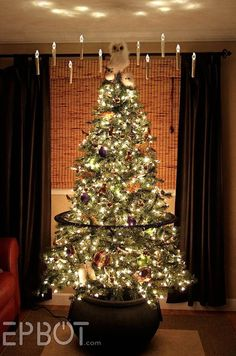Harry Potter inspired Christmas tree!!!! So cool!