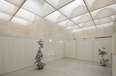 Recyclable acrylic skylights have been placed all along the home's ceiling