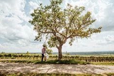 svadobná fotografka z Bratislavy - hmfoto.art - Silvie & Jakub Vineyard, Country Roads, Outdoor, Art, Outdoors, Art Background, Vine Yard, Kunst, Vineyard Vines