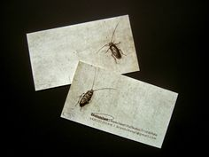business card for a disinsectant. :).    Love the name for a pest control technician.