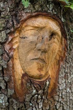 1000 images about carved wood on pinterest wood for Tree spirit carvings by keith jennings