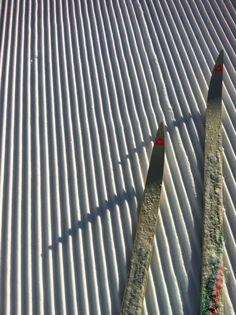 cross-country skiing  ski de fond