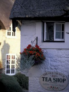 Cottages in Old Shanklin, Isle of Wight, England    http://TreyPeezy.com  http://twitter.com/treypeezy
