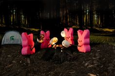 Cannibal Peeps.... Peeping Bear Dunes and 29 other epic Peeps parodies | MLive.com