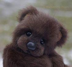 OWEN - a mink bear by By Tammy Wamboldt | Bear Pile