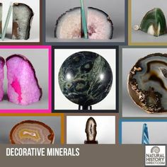 Minerals - Shop the collection, website updated daily, click here now www.NaturalHistoryDirect.com