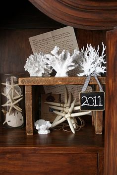 """project for my """"sea"""" bathroom! pet store coral + white spray paint."""