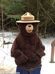 Smokey the Bear! Smokey The Bears, Maple Syrup, Teddy Bear, Spring, Animals, Animales, Animaux, Animal, Teddybear