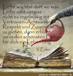True Words, German Words, Mindfulness, Love, Quotes, Books, Inspiration, Philosophy, Soul Quotes