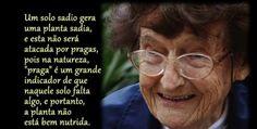 Ana Primavesi - brasileira pioneira da agroecologia