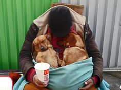 Between of homeless people have dogs and/or cats. Unfortunately those with pets it becomes more difficult to find housing or a rent subsidy. SAVE THE ANIMALS! Homeless Dogs, Homeless People, Helping The Homeless, Love Pet, Puppy Love, Animals Beautiful, Cute Animals, Person Sitting, We Are The World