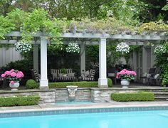 Plan your poolside plantings to create an attractive backyard.