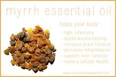 Learn how to use myrrh essential oil for thyroid support, liver function, healing, and even wrinkles., via SustainableBabySteps.com
