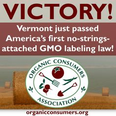 """Today, by a vote of 28-2, the Vermont state Senate passed H.112, a bill to require mandatory labeling of foods sold in Vermont that contain genetically modified organisms (GMOs). The bill also makes it illegal to call any food product containing GMOs """"natural"""" or """"all natural."""" Way to go, Vermont!"""