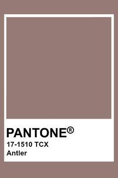 Pantone Antler Pantone Tcx, Pantone Swatches, Paint Swatches, Color Swatches, Orange Color Palettes, Pantone Colour Palettes, Red Colour Palette, Colour Schemes, Pantone Color Guide