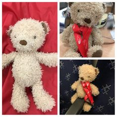 """Found on 01 Apr. 2016 @ Eh1 1bb. """"Ted"""" has been found at Edinburgh Waverley travel centre. He will be well taken care of until he finds his little human Visit: https://whiteboomerang.com/lostteddy/msg/119dec (Posted by Jamie-Leigh @ vtec on 01 Apr. 2016)"""