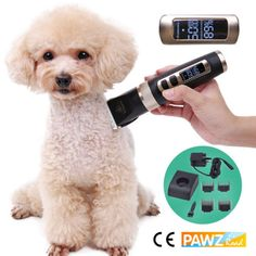 Us 3143 20 Off Professional Pet Hair Trimmer Rechargeable Dog Cat Grooming Clipper Led Display Electrical Animals Haircut Machine 100 In Cat Make Hair Grow, How To Make Hair, Best Hair Care Products, Deep Conditioning Treatment, Mild Shampoo, Dull Hair, Cat Grooming, Bad Hair Day, Hair Removal