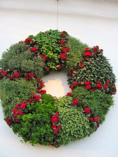 planted cloud: Living Wreaths