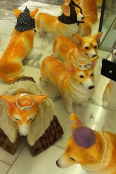 Not exactly cats and not really fashion, but these are the Jubilee corgis at Selfridges.