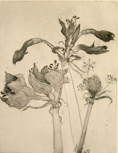 "Artist Katie DeGroot makes that point wonderfully in her ""Tribute to Dead Flowers"" intaglio prints."