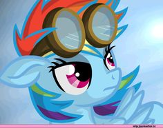 mlp gif,Rainbow Dash
