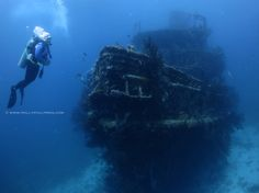 8 Tips to Increase Your Diving Confidence - http://www.scuba-blog.com/increase-your-diving-confidence/