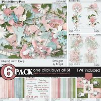 Mend with love {6-Pack plus FWP} by Designs by Brigit