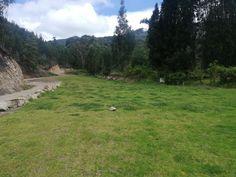 En periland eco park! Country Roads, Park, Ranger, Parks