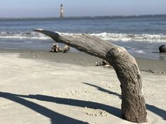 ITAP of a piece of wood with a lighthouse in the background on Folly Beach SC http://ift.tt/2lPRNy1