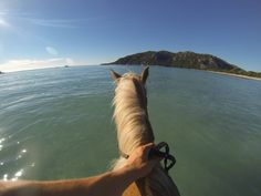 """Horse ride then bathing on horseback in Corsica. It is magnificent!"" - Gregoire Bedeau Hands-free capture made easy with the Chest Mount Harness: http://gopro.com/camera-mounts/chest-mount-harness"