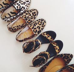 leopard is a neutral.