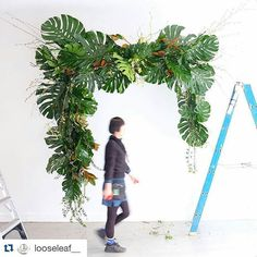 Freakin' amazing!  @looseleaf__ is the mistress of all things foliage and also the genius behind a lot of the fabulous floral displays at this season's Melbourne Spring Fashion Week.  Check out @_msfw_ for more fashiony floral goodness!  #Repost @looseleaf__ with @repostapp ・・・ Floating media wall/arch for @olgabergclutches new season launch! With @twohandsagency have fun tonight girls! 🌿🍃