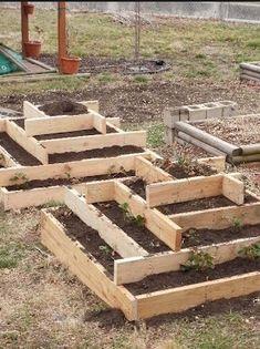 Výsledek obrázku pro vyvýšené záhony pro pěstování zeleniny