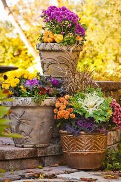 In This Trio Of Containers, No Two Have The Same Plants, But They Work Well Together Because Each Pot Picks Up Colors And Textures From The Others. Modest Pumpkins And Gourds Pile On Fall Accents. More Ideas For Decorating With Mums: Beautiful Flowers Garden, Pretty Flowers, Fall Flowers, Purple Flowers, Beautiful Gardens, Container Plants, Container Gardening, Fall Containers, Fall Vegetables