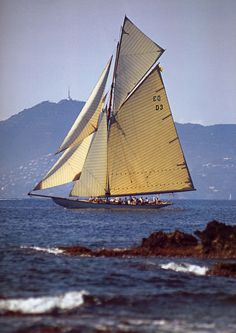 Yacht Tuiga, built 1909