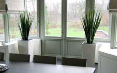Artificial Cactus Plant in luxury pot