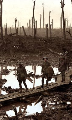 Australian gunners on a duckboard track in Château Wood near Hooge, 29 October 1917.