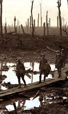 Australian gunners on a duckboard track in Château Wood near Hooge, 29 October…