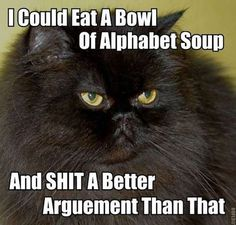 """Image shows a long-haired black cat with an """"oh, puh-leez"""" expression. Caption says, """"I could eat a bowl of alphabet soup and SHIT a better argument than that."""""""