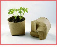 El cartón viene del árbol y vuelve a la tierra como eco-maceta!  Reciclar los rollos de papel para hacer estas eco-macetas para germinar semillas me parece una idea genial!  Foto: http://savingslifestyle.com/2011/06/