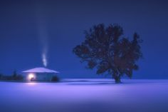 Winter nights - null